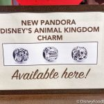 This NEW Pandora Charm Has Roared Its Way Into Our Animal Kingdom Lovin' Hearts!