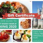 DFB Video: 8 Tools EVERYONE Needs For Their Disney World Vacation!