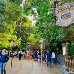 Hey Annual Passholders! Find Out How You Can Ride Indiana Jones Adventure After Hours in Disneyland Next Month!