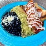 Review and Pics! Massive TAMALES and Horchata Festival Specials in Disney California Adventure!