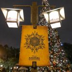 Disney's Animal Kingdom Extends Hours For Christmas Day and New Year's Eve!