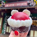 Review! The Cranberry Mickey Brownie is a Holly Jolly New Treat in Disney World!