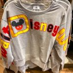 Spotted! We Found These NEW Colorful Spirit Jerseys (With a Twist!) in Disney World!