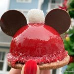 Review: YET ANOTHER Santa Hat Holiday Snack in Disney World?!?