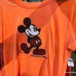 NEW DISNEY COLOR TREND Spotted at Epcot's Mouse Gear!