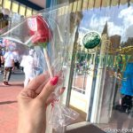 Review! Red Rose Valentine's Day Cake Pops Are BACK in Disney World!