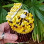You Won't Bee-lieve This NEW Cupcake in Disney World!