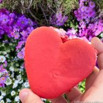Review! We Have Total Heart Eyes For the NEW Valentine Macaron in Disneyland!