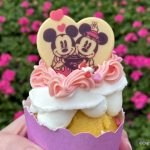 Review! Cherry Almond Cupcake Joins the Valentine's Treats at Disney's Grand Floridian Resort
