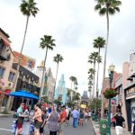 What's New in Hollywood Studios: A Missing Favorite and New Treats for Your Pets!