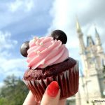 Going To Disney World in February? Here's What You Need To Know!