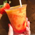 This New Drink Makes Us Want to Stay at Disney's Animal Kingdom Lodge ALL DAY LONG!