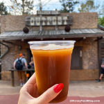 Review! Check Out This Classic Combo With a FROSTY Twist in Disney World!