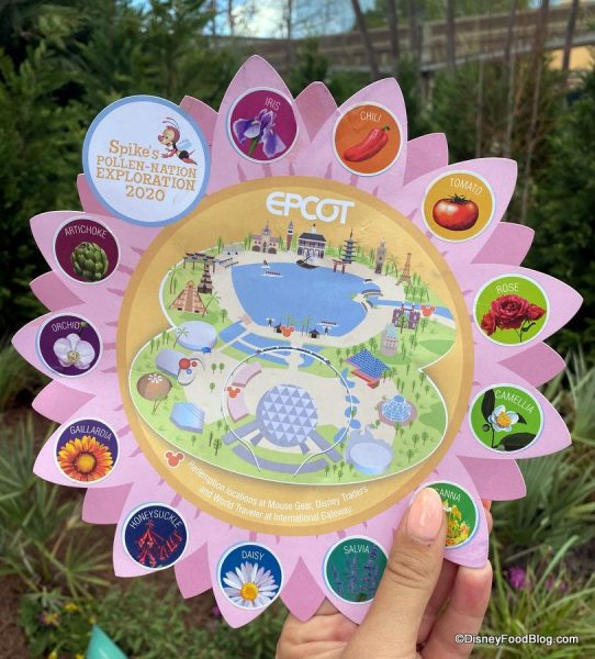 2020 Disney Flower and Garden Festival set of 4 cups from Spike/'s Pollen-Nation