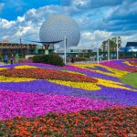 Going to Disney World in May? Here's What You Need to Know!