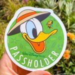 NEWS: Walt Disney World Annual Passholders Have Started Receiving E-mails About the Latest Updates
