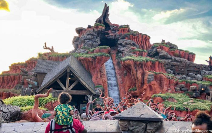 This Splash Mountain Merchandise Was FLYING Off the Shelves Today in Disney World!