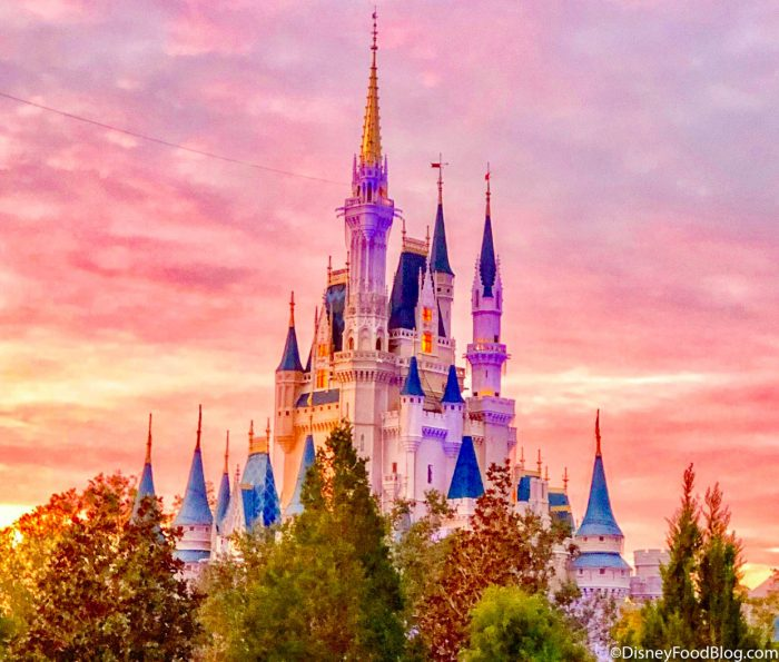We Asked Our Readers: Do You Think It's Too Soon to Reopen Disney World Parks? Here's What They Said.