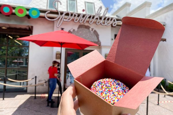Review! We're Making a Transaction at Sprinkles' Cupcake ATM in Disney Springs