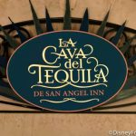 """""""You're Welcome!"""" Disney World is Getting a New Tequila and It's Made by The Rock!"""