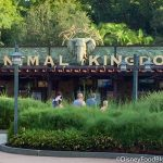 What's New at Disney's Animal Kingdom: Updated Mask Announcement, NEW Food, and a Baby Yoda Shirt!
