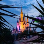 Disney World Park Pass Reservation System FAQ