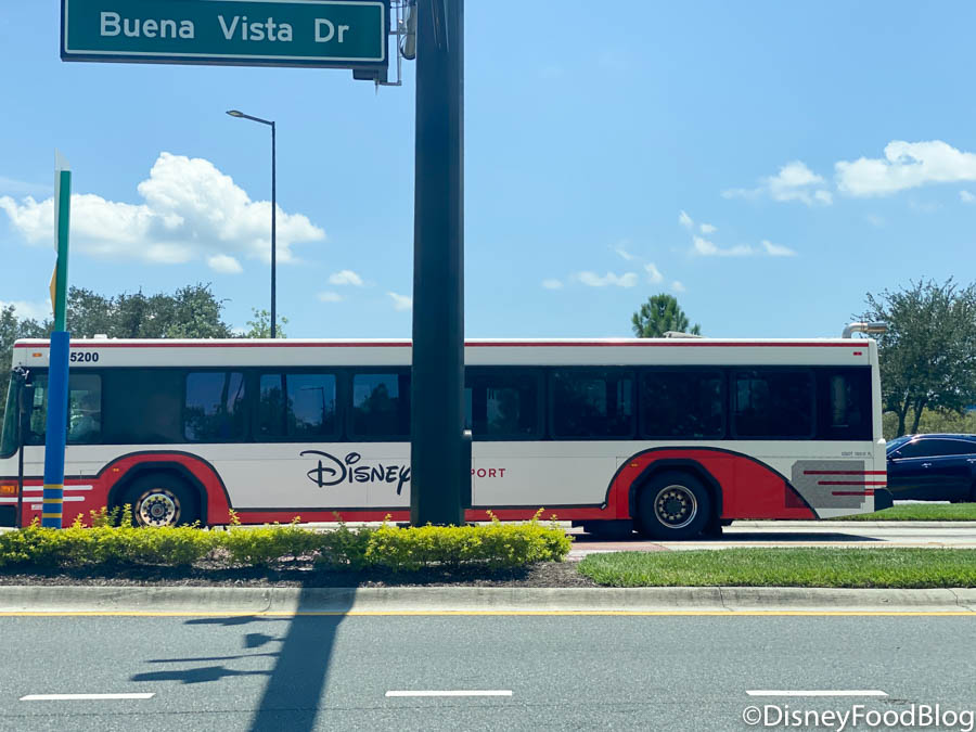 What You Need To Know About Taking Disney Buses Now That Disney World Is Reopened The Disney Food Blog