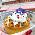 REVIEW! We Found the MOST Patriotic Treat in Disney World for the Fourth of July!