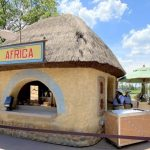 Review! The Africa Booth is Serving Up Some INCREDIBLE Flavors at the EPCOT Food and Wine Festival!