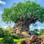 What's New at Disney's Animal Kingdom: One of Our Favorite Entrees is BACK, Tons of Pandora Merch, and New Hours at Isle of Java!