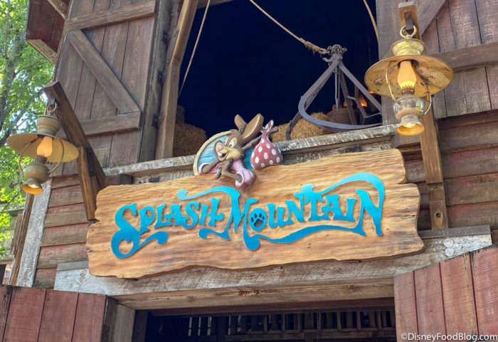 See All of the Splash Mountain Merchandise Available (For Now…) in Magic Kingdom