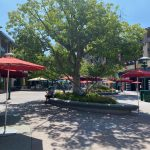 What's New In Downtown Disney — 65th Anniversary Merchandise, Increased Shade, and Restaurant Updates