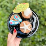 Find Out Where You Can Get 3 Cupcakes for $5 in Disney World!