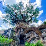 NEWS! Disney World Extends Park Hours at Animal Kingdom on September 27th!