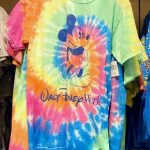 We Spotted Some Seriously Colorful New T-Shirts at Disney World Today!