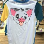 Get 2 Character Shirts For the Price of 1 With These AWESOME Reversible Tees We Found in Disney World!