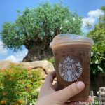 Review! Start Your Disney World Morning Right With This NEW Starbucks Cocoa Cold Brew!