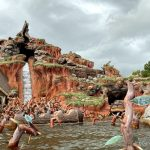 PHOTO: Splash Mountain Evacuated and Now Temporarily Closed in Disney World