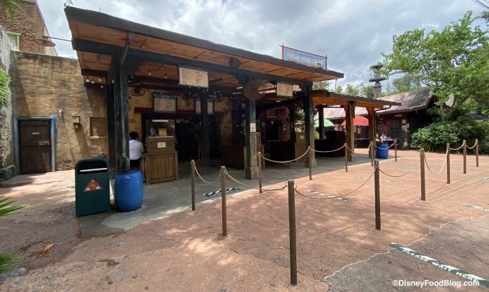 What's New at Disney's Animal Kingdom: Pumpkin Spice Coffee, New Mugs, and Updated Menus!