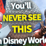 DFB Video: You'll NEVER SEE THIS In Disney World!