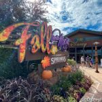 Fall Arrives With LOTS of New Restaurant Cocktails in Disney Springs!