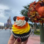 What's New at Magic Kingdom: Halloween Rainy Day Cavalcade, Cute 'Coco' Outfits, and Spooky Cupcakes!