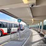 NEWS: Park-to-Park Transportation Is Set to Return to Disney World in 2021