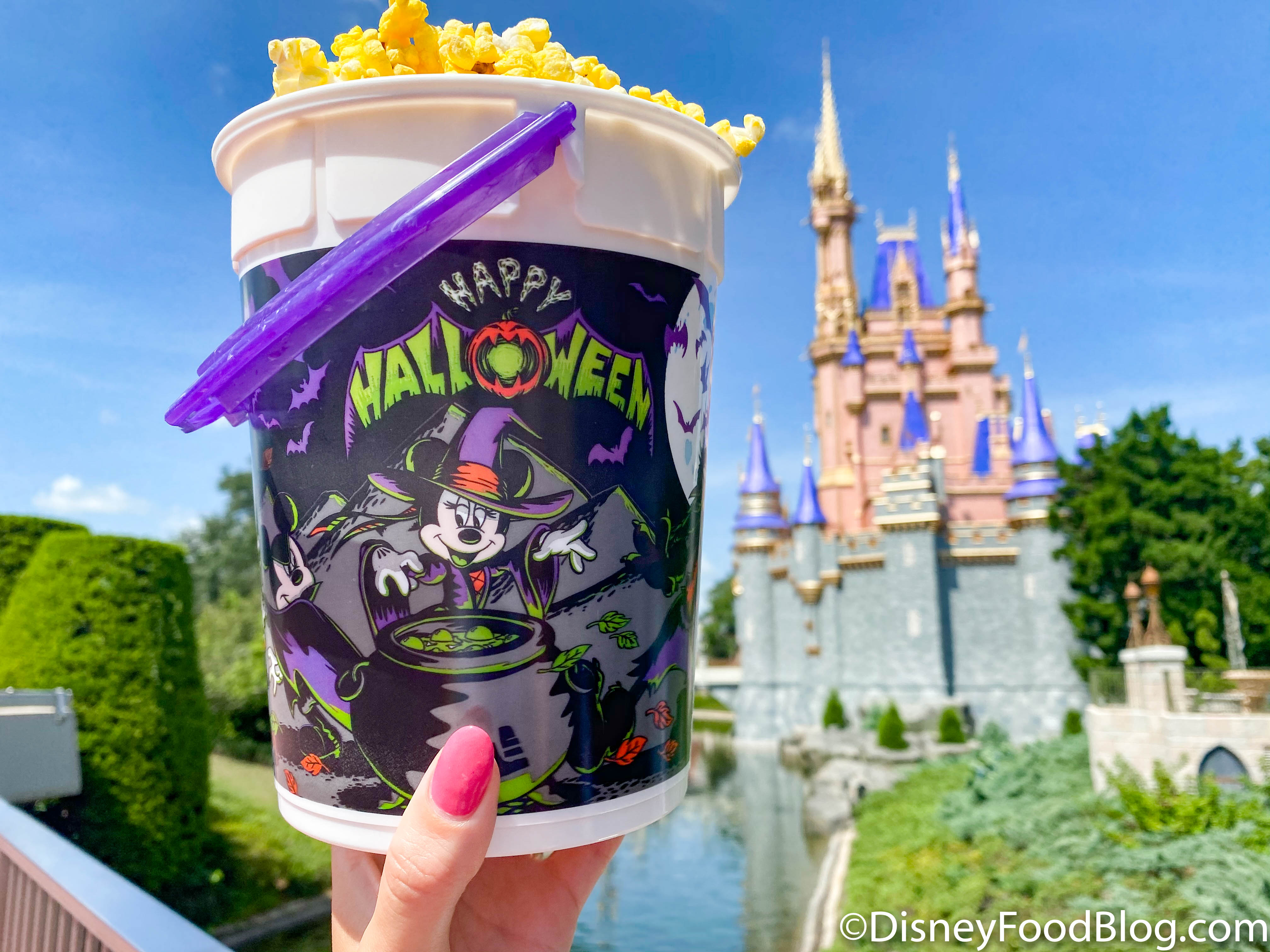 Photos And Reviews All The 2020 Fall And Halloween Treats In Walt Disney World The Disney Food Blog