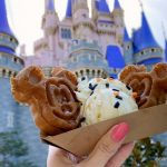 Donut Fear — Another Halloween Treat is Here! Cinnamon Donuts Are Back in Disney World!