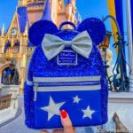 Forget Spirit Jerseys — THIS is the Gear You REALLY Need For Your Disney World Trip!