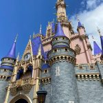 Here We Gooo! PHOTOS AND VIDEOS From Magic Kingdom in Disney World Today!