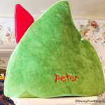 This Super Soft Peter Pan Hat in Disney World is a Cozy Fall Mood!