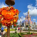 What's New in Magic Kingdom: Madame Leota Sippers, a Rabbit Spotting, and MORE!