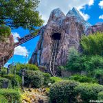 24,000 Disney Fans Ranked EVERY Ride in Animal Kingdom!
